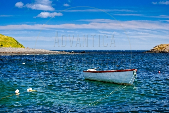 White fishing boat in a bay