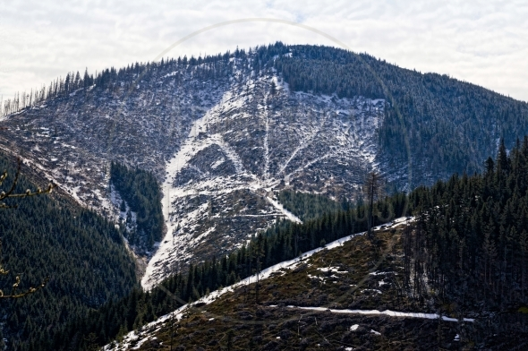 Scarred mountain side after clear-cutting