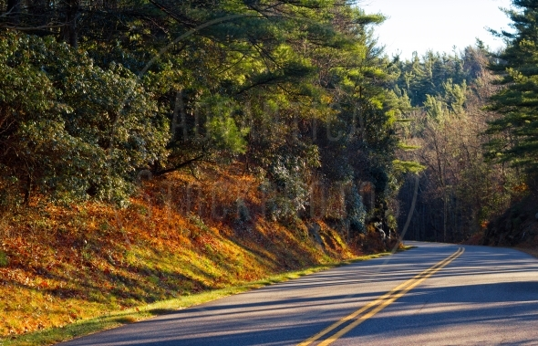 Blue Ridge Parkway in early spring