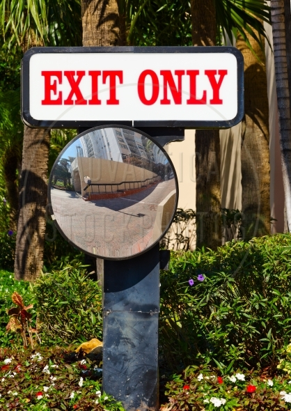 Exit Sign And Colorful Flowers – vertical