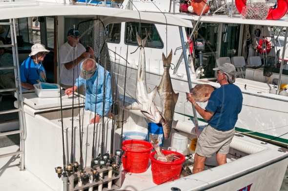 Anglers on a fishing boat with caught fish