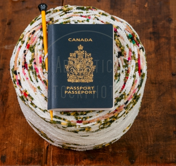 Passport and knitting kit – yarn and needle