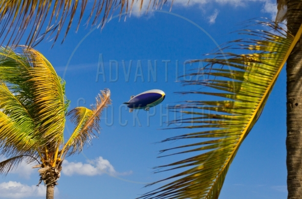 Airship in the sky between the palm trees