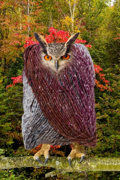 Owl dressed in a wool coat